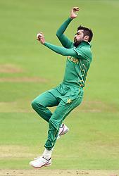 Mohammad Amir, Pakistans