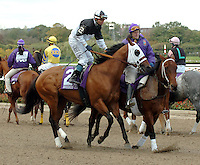 Breeders Cup 2005 - Belmont Park, Elmont, NY