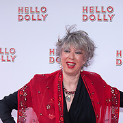 NLD/Rotterdam/20200308 - Hello Dolly premiere ,