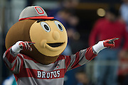 Brutus Buckeye, mascot for the Ohio State Buckeyes cheers for his team against the Oregon Ducks during the College Football Playoff National Championship Game at AT&T Stadium on January 12, 2015 in Arlington, Texas.  (Cooper Neill for The New York Times)