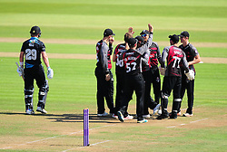 Somerset celebrate the wicket of Tom Fell.  - Mandatory by-line: Alex Davidson/JMP - 17/08/2016 - CRICKET - Cooper Associates County Ground - Taunton, United Kingdom - Somerset v Worcestershire Rapids - Royal London One Day Cup Quarter Final