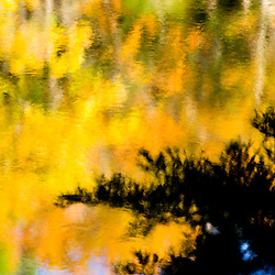 Fall colors reflect in the Saco River in Hollis, Maine