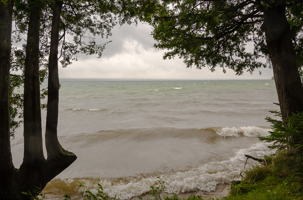 A lake shore framed by trees.