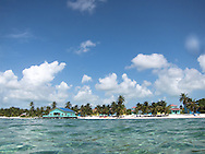 Ambergris Caye, Belize 8/31/2012<br /> Snorkeling the barrier reef.