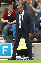 Brighton & Hove Albion manager Chris Hughton celebrates after the final whistle
