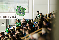 during ice-hockey match between HDD Olimpija Ljubljana and Dornbirn Buldogs in EBEL League 2016/17, on February 4th, 2017 in Hala Tivoli, Ljubljana, Slovenia. Photo by Grega Valancic / Sportida