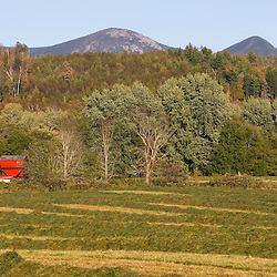 A hay field in Maidstone, Vermont.