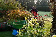 A gardener at work on an early September morning at Waterperry Gardens, Waterperry, Wheatley, Oxfordshire, UK