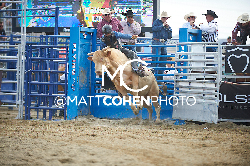 Bull rider Dalton Votaw of Liberty, TX rides 986 at the Rancho Mission Viejo Rodeo in San Juan Capistrano, CA.  <br /> <br /> <br /> UNEDITED LOW-RES PREVIEW<br /> <br /> <br /> File shown may be an unedited low resolution version used as a proof only. All prints are 100% guaranteed for quality. Sizes 8x10+ come with a version for personal social media. I am currently not selling downloads for commercial/brand use.