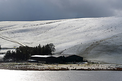 © Licensed to London News Pictures. 10/02/2019. Llandegley, Powys, Wales, UK.       Snow falls on high land near Llandegley in Powys, Wales, UK. credit: Graham M. Lawrence/LNP