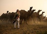 Pushkar and the Camel Fair in Photos