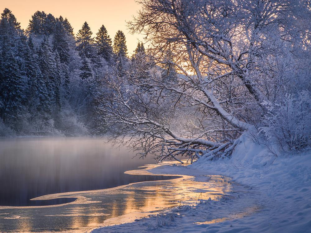 Klæbu, Norway. January 2021.