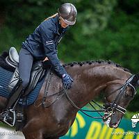 Sunday 18 August - Social Media Images - Team GBR - FEI European Championships 2019 - Rotterdam