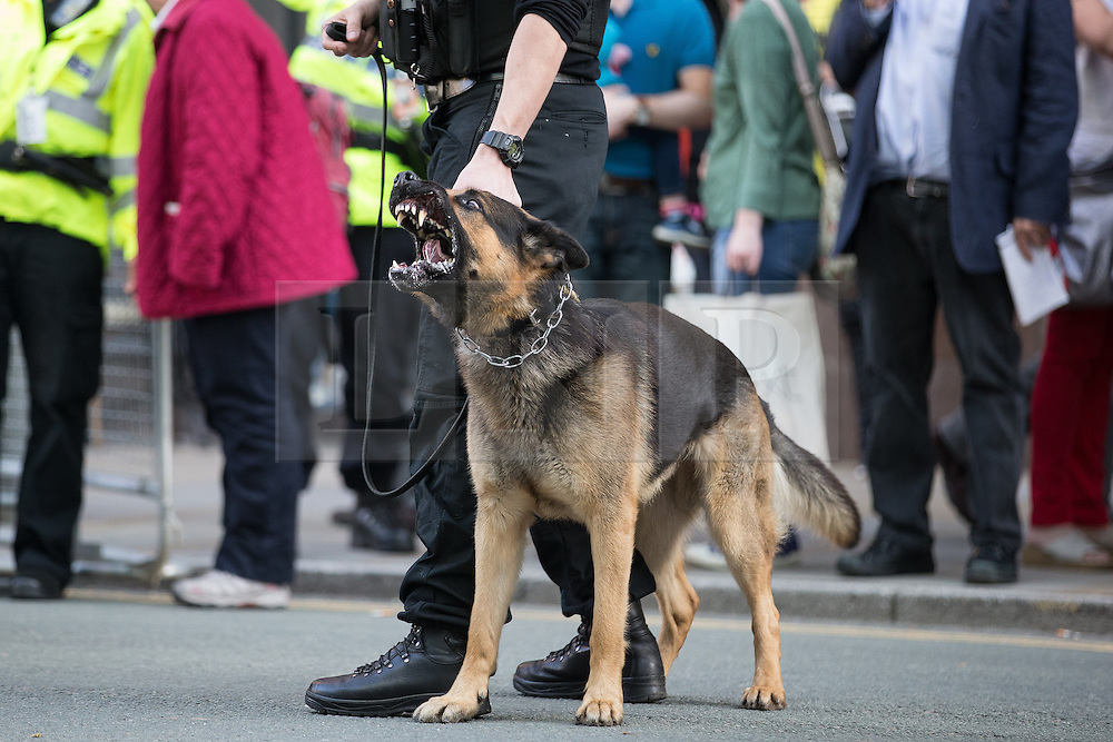 © Licensed to London News Pictures . 04/10/2015 . Manchester , UK .  Police deploy dogs to control scuffles outside the entrance to the conference . A demonstration against the Conservative government , organised by The People's Assembly , at Castlefield Bowl in Manchester , during the first day of the Conservative Party Conference in Manchester . Photo credit: Joel Goodman/LNP
