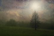 Redbubble Prints: http://rdbl.co/2mXwdu5<br /> Society6 Prints: http://bit.ly/2DriIgp