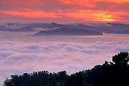 Fog banks roll into San Francisco Bay at sunset, from Berkeley Hills, California