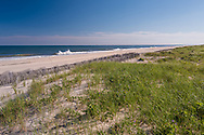 Atlantic Coast, Water MIll, NY