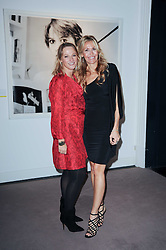 Left to right, CHEYENNE WESTPHAL chairman of contemporary art, Sotheby's and MELISSA ODABASH at the Krug Mindshare auction held at Sotheby's, New Bond Street, London on 1st November 2010.