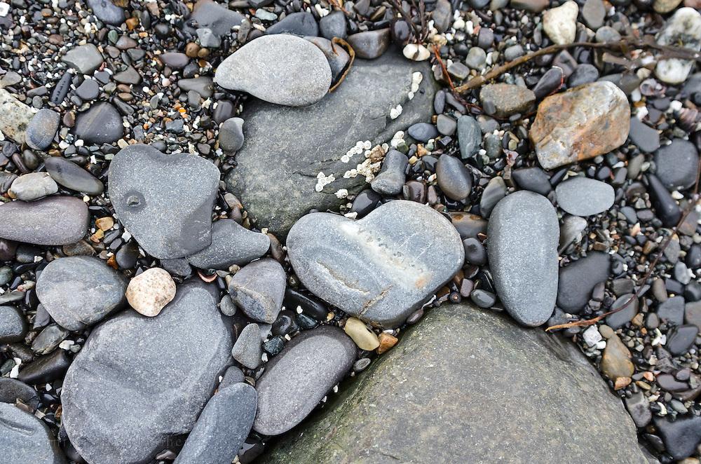 A heart-shaped stone on a rocky beach, Bar Harbor, Maine.