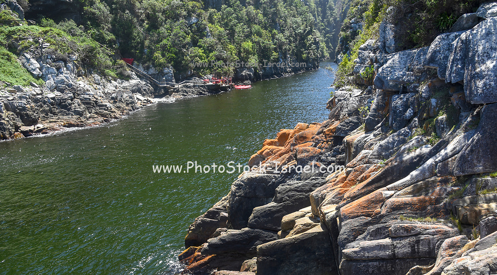 Bloukrans river near Nature's Valley, Western Cape, South Africa.