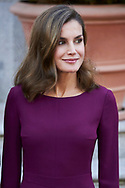 Queen Letizia of Spain attended an official lunch at Palacio de la Zarzuela on November 6, 2017 in Madrid, Spain.