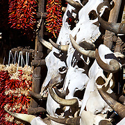 Red chile ristras and bleached cattle skulls, two of New Mexico's iconic souvenirs, on display for tourists in Santa Fe.