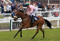 Equiano Perle ridden by Kevin Lundie during The British Stallion Studs EBF Novice Stakes at Yarmouth Racecourse.
