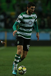 February 11, 2018 - Lisbon, Lisboa, Portugal - Sporting CP defender Cristiano Piccini from Italy during the Premier League 2017/18 match between Sporting CP and CD Feirense at Estadio Jose Alvalade on February 11, 2018 in Lisbon, Portugal. (Credit Image: © Dpi/NurPhoto via ZUMA Press)