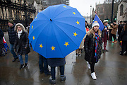 Anti Brexit protester carrying a European Union flag umbrella in Westminster outside Parliament on 22nd January 2020 in London, England, United Kingdom. With a majority Conservative government in power and Brexit day at the end of January looming, the role of these protesters is now to demonstrate in the hope of the softest Brexit deal possible.