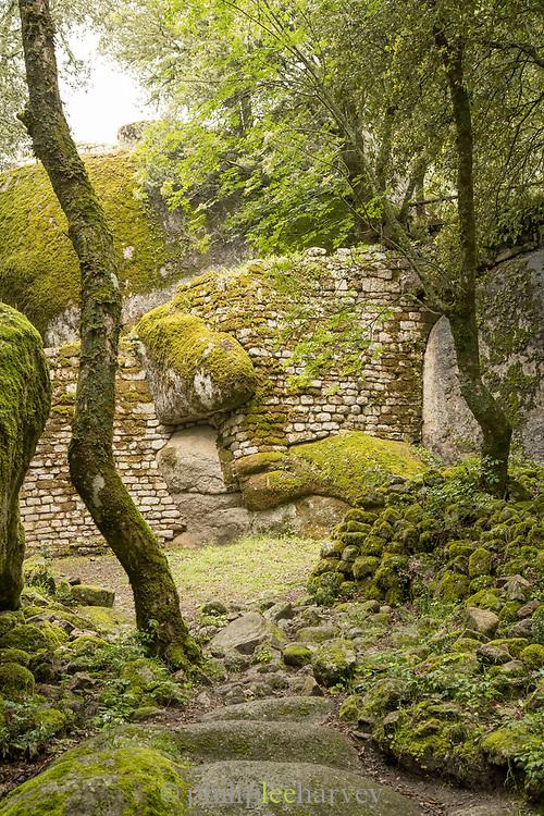 Old ruin at archaeological site, Cuccuruzzu, Corsica, France