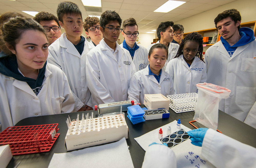 Students work on a blood pathogen test at the DeBakey High School for Health Professionals, April 12, 2017, in Houston.