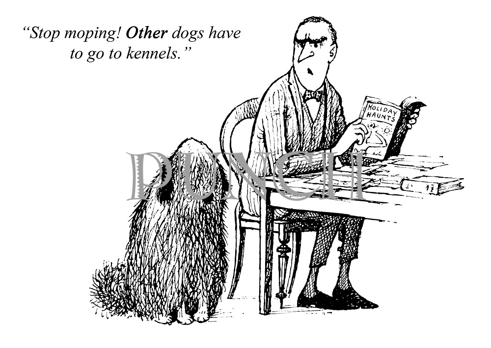"""""""Stop moping! Other dogs have to go to kennels."""""""