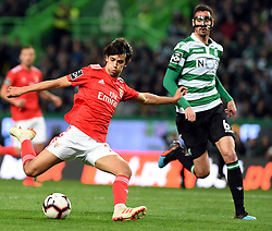 LISBON, Feb. 4, 2019  Joao Felix (L) of Benfica shoots during the Portuguese League soccer match between SL Benfica and Sporting CP in Lisbon, Portugal, Feb. 3, 2019. Benfica won 4-2. (Credit Image: © Xinhua via ZUMA Wire)