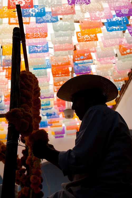 """North America, Mexico, Oaxaca Province, Oaxaca, man tying marigold flowers to altar (ofrenda) during Day of the Dead (Dias de los Muertos) celebration, below tissue-paper flags known as """"papel picado"""""""
