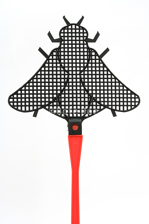 a fly swatter in the form of a fly