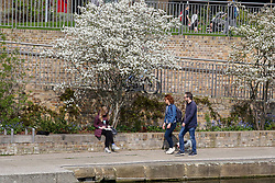 © Licensed to London News Pictures. 30/03/2019. London, UK. Londoners enjoy the warm spring sunshine along the Regents Canal as warm weather across the UK continues. Photo credit: Dinendra Haria/LNP