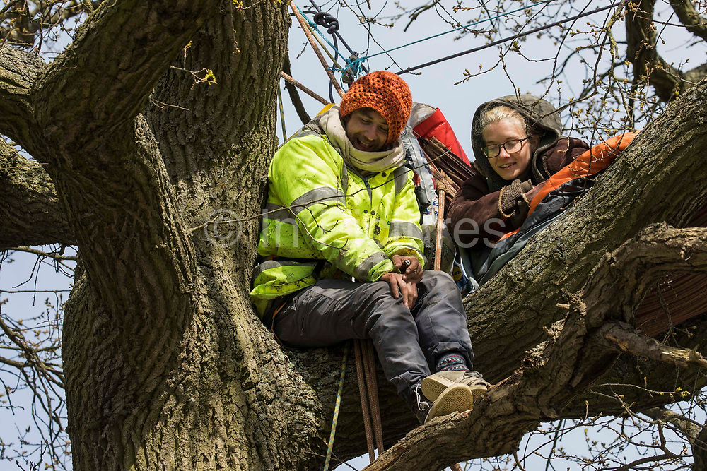 Stop HS2 activists occupy a mature oak tree in order to try to prevent it and two other oak trees from being felled to construct a temporary access road for the HS2 high-speed rail link on 26th April 2021 in Quainton, United Kingdom. Environmental activists continue to oppose the controversial HS2 infrastructure project from a series of protection camps along its Phase 1 route between London and Birmingham.