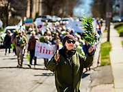 "14 APRIL 2019 - DES MOINES, IOWA: A woman carries a palm in the Palm Sunday procession for peace in Des Moines. About 200 people participated in an interdenominational  Palm Sunday procession calling for peace. The theme of the procession was ""To Love and Defend our Sacred Earth"" and it was sponsored by Des Moines Faith Committee for Peace.     PHOTO BY JACK KURTZ"