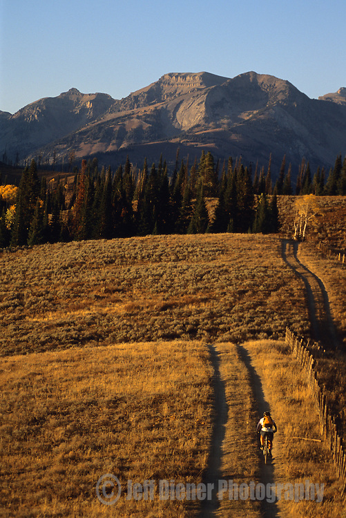 A mountain biker rides along a dirt road in the Gros Ventre Mountains, Wyoming.