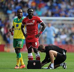 Cardiff City's Kenwyne Jones receives treatment to his ankle. - Photo mandatory by-line: Alex James/JMP - Mobile: 07966 386802 30/08/2014 - SPORT - FOOTBALL - Cardiff - Cardiff City stadium - Cardiff City  v Norwich City - Barclays Premier League