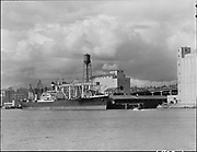 """ackroyd_06823-1. """"Balfour Guthrie Co. Santa Juana from Irving Dock showing scaffolding and high water. April 28, 1956"""" (Crown Mills, Permanente Cement area)"""