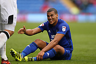 Lee Peltier of Cardiff city looks on. EFL Skybet championship match, Cardiff city v Derby County at the Cardiff city stadium in Cardiff, South Wales on Saturday 30th September 2017.<br /> pic by Andrew Orchard, Andrew Orchard sports photography.