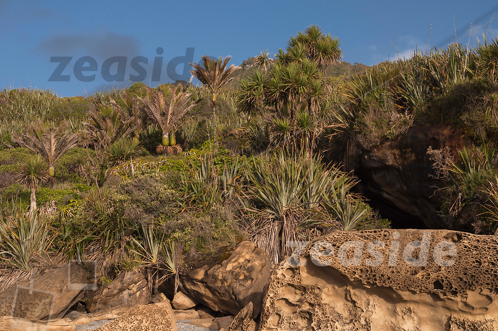 A collapsed limestone cave at a beach of the west coast shore line of the Paparoa National Park.