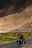 Near Khardungla Pass, Ladakh, Jammu and Kashmir State, India.