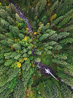 Aerial view of Silver falls state Park in Oregon, USA.