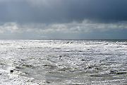 The Hague, South-Holland/Netherlands - 200226: Wild sea with waves on a stormy day. Industrial area at the horizon