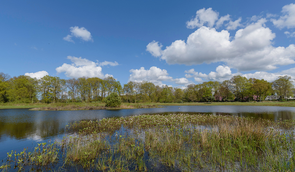Lagieskamp, Hilversum, Noord Holland, Netherlands