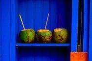 Coconut Hut. São Paulo, Brazil.