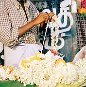 Preparing flowers for Hindu offerings, Kerala, India