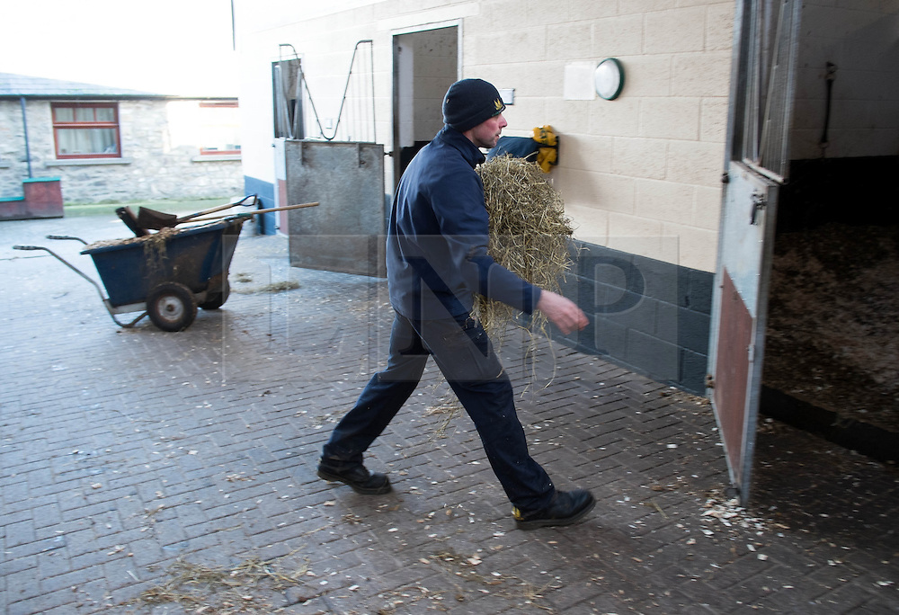 © Licensed to London News Pictures. 22/03/2014<br /> <br /> Middleham, North Yorkshire<br /> <br /> Hay is taken into a stall at the Mark Johnston stables in Middleham, North Yorkshire. Race horses have been trained in Middleham for over 200 years using the extensive gallops on the high moor. There are currently 15 stables based around the small Yorkshire village.<br /> <br /> Photo credit : Ian Forsyth/LNP